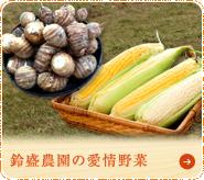 鈴盛農園の愛情野菜