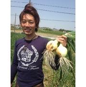 素敵(ステ~キ)な新玉ねぎ ☆便利な7kg☆
